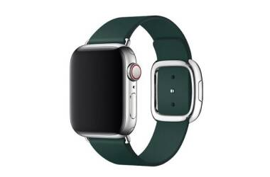 Pasek do Apple Watch 38/40mm Apple Modern Buckle (L) - zielony